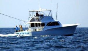 Rameseas Sportfishing