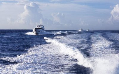 A Growing Fellowship of Princess Yachts Owners